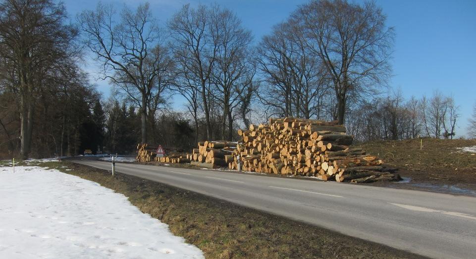 An dieser Stelle wird die Grünsinker Straße in die Westumfahrung einmünden. Die Abfahrt nach Schluifeld liegt dann etwa 130 m weiter nördlich.